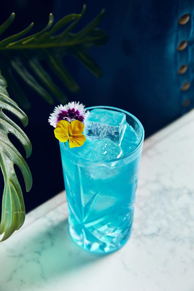 Kimpton Peacock Room cocktail